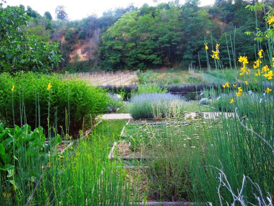Giardinaggio/Traslochi